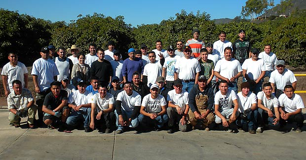 Our Carpiteria Team